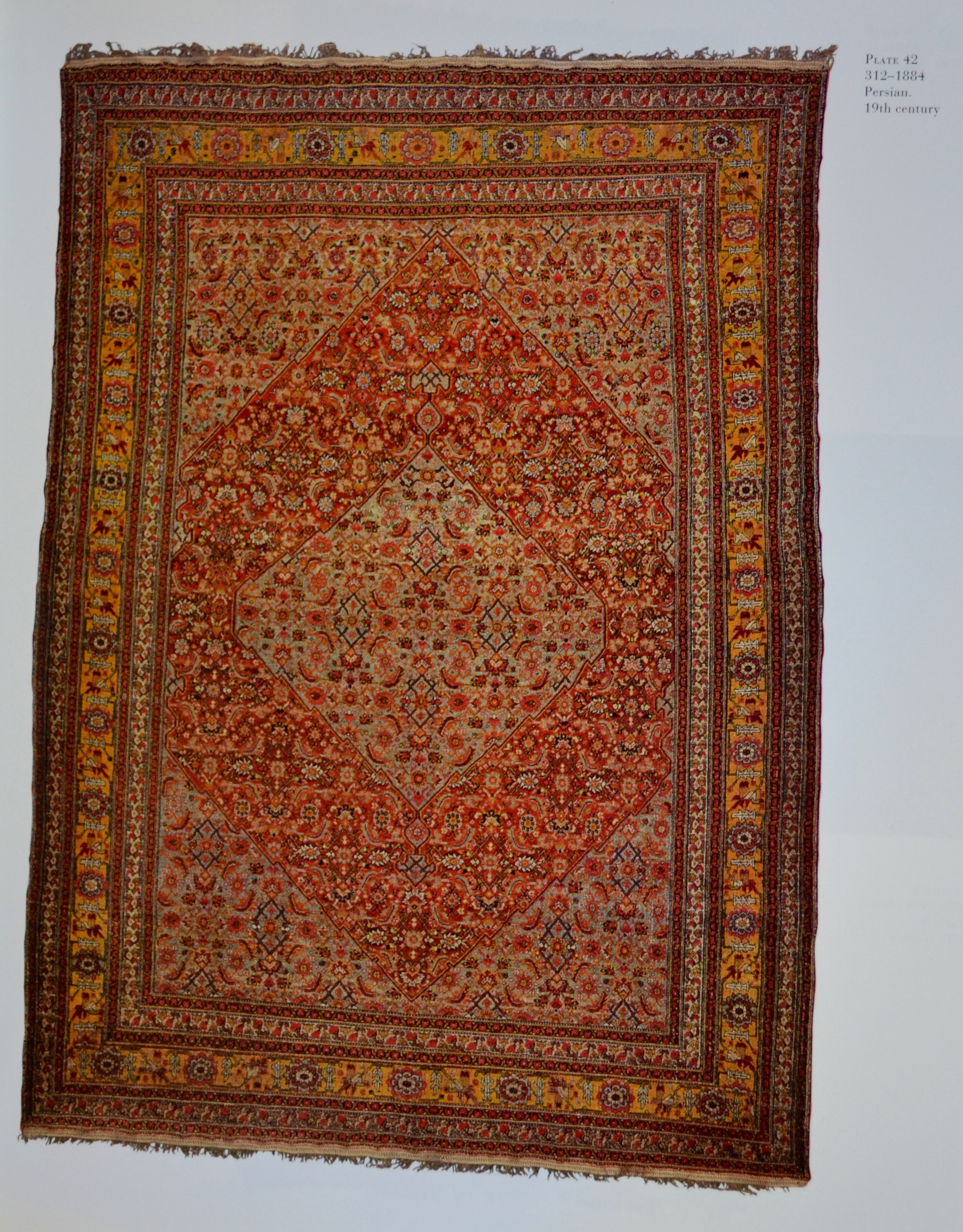 Rug Carpet Storage Ny
